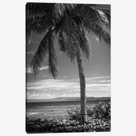 Ocean View Canvas Print #DVS1} by Debra Van Swearingen Canvas Wall Art