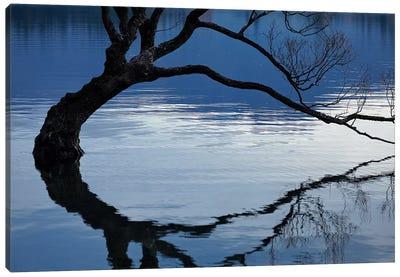 That Wanaka Tree reflected in Lake Wanaka, Otago, South Island, New Zealand Canvas Art Print
