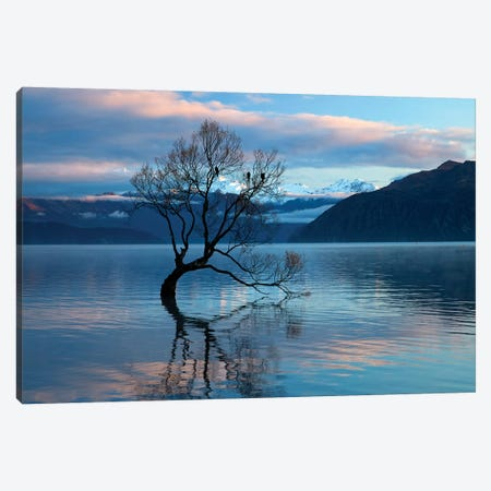 That Wanaka Tree reflected in Lake Wanaka, Otago, South Island, New Zealand Canvas Print #DWA32} by David Wall Canvas Print