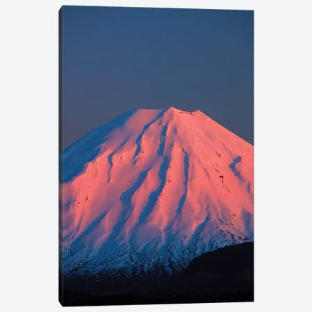 Alpenglow On Mt. Ngauruhoe At Dawn, Tongariro National Park, Central Plateau, North Island, New Zealand Canvas Print #DWA39} by David Wall Canvas Art Print