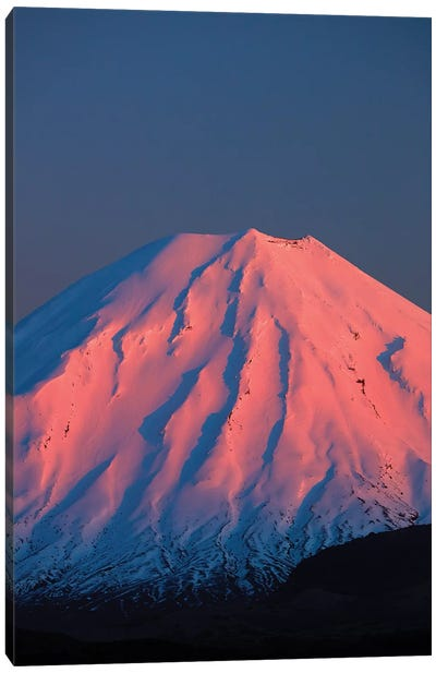 Alpenglow On Mt. Ngauruhoe At Dawn, Tongariro National Park, Central Plateau, North Island, New Zealand Canvas Art Print