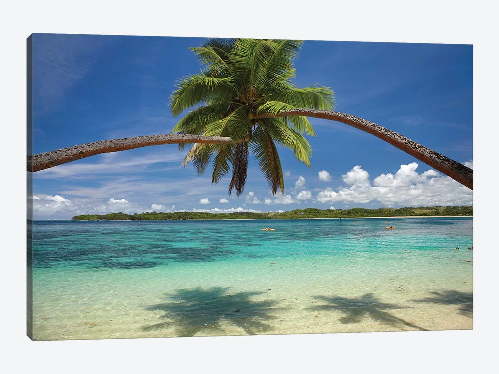 Hugging Palm Trees Over Cuvu Harbour, Coral Coast, Viti Levu, Fiji by David Wall 1-piece Canvas Art