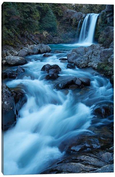 Tawhai Falls, Whakapapanui Stream, Tongariro National Park, Central Plateau, North Island, New Zealand Canvas Art Print