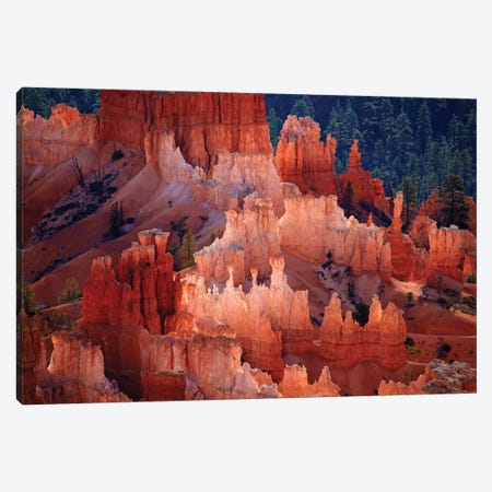 Hoodoos In The Amphitheater As Seen From inspiration Point, Bryce Canyon National Park, Utah, USA Canvas Print #DWA9} by David Wall Canvas Artwork