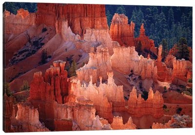 Hoodoos In The Amphitheater As Seen From inspiration Point, Bryce Canyon National Park, Utah, USA Canvas Art Print
