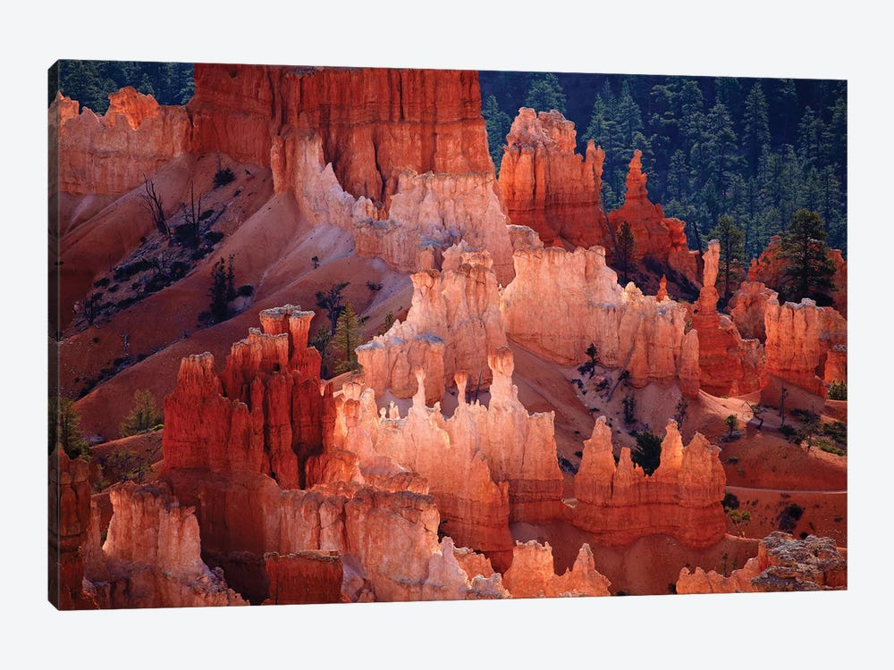 Hoodoos In The Amphitheater As Seen From inspiration Point, Bryce Canyon National Park, Utah, USA 1-piece Canvas Art Print