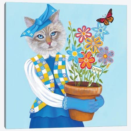 Catnip Canvas Print #DWB33} by Dawna Boehmer Canvas Artwork