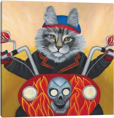 Harley Cat Canvas Art Print