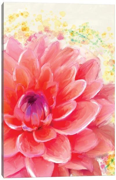Dahlia Splatter Canvas Art Print