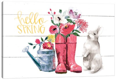 Hello Spring Canvas Art Print