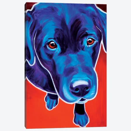 Olive The Labrador Canvas Print #DWG102} by DawgArt Canvas Print