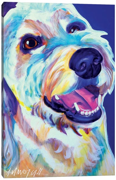 Penny The Goldendoodle Canvas Art Print
