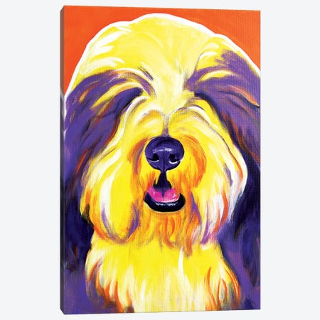 Banana The Bearded Collie Canvas Print #DWG10} by DawgArt Canvas Print