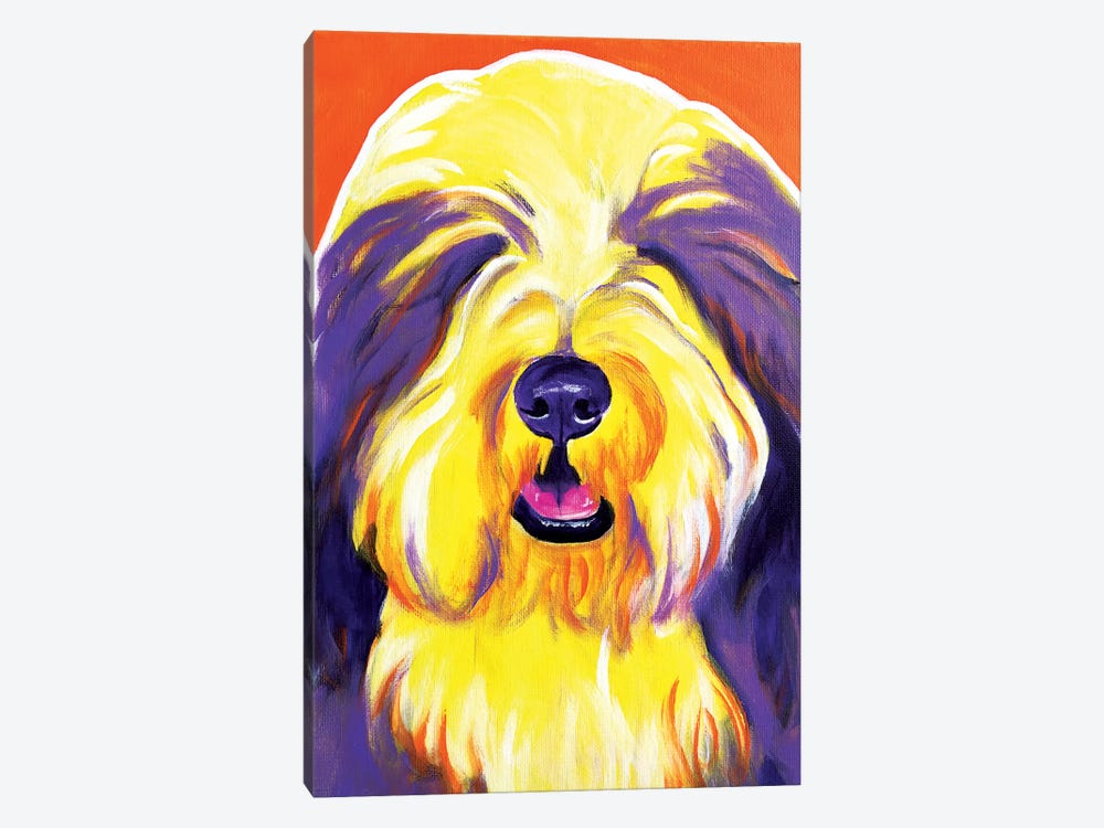 Banana The Bearded Collie by DawgArt 1-piece Canvas Print