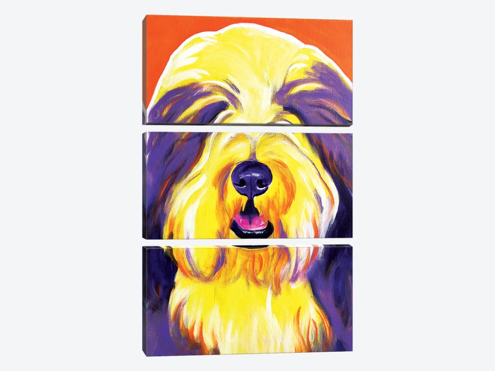 Banana The Bearded Collie by DawgArt 3-piece Art Print