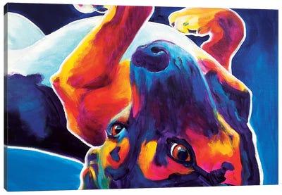 Roxy The Beagle Canvas Art Print