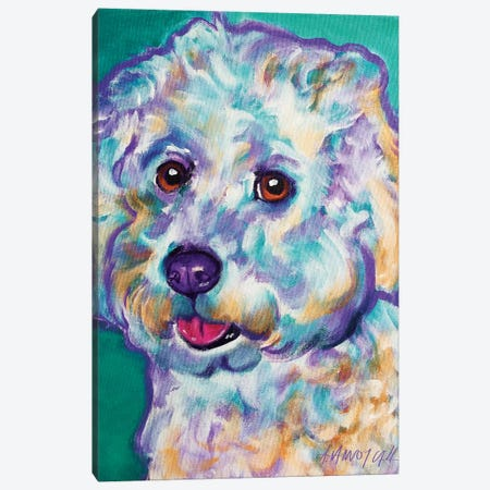 Ruben The Bichon Canvas Print #DWG118} by DawgArt Canvas Wall Art