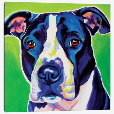 Sadie Canvas Print #DWG119} by DawgArt Canvas Artwork