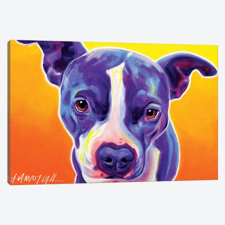 Sadie The Pit Bull Canvas Print #DWG120} by DawgArt Canvas Print