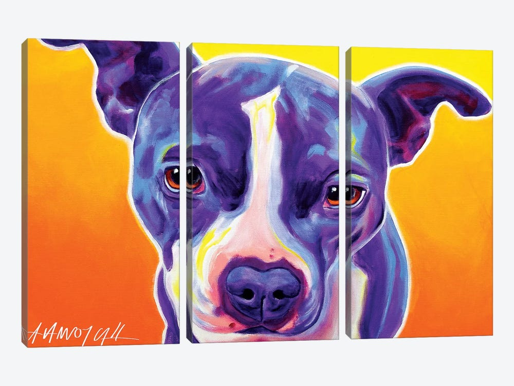 Sadie The Pit Bull by DawgArt 3-piece Canvas Artwork