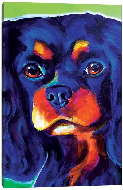 Saffy Canvas Art Print