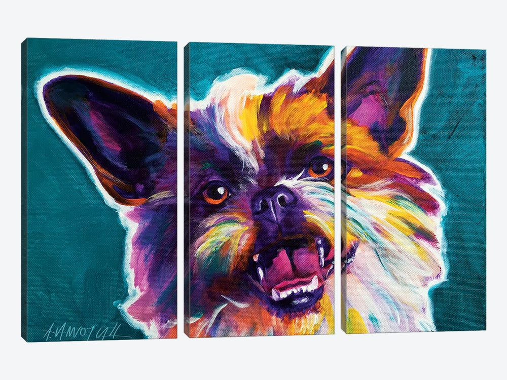 Spicey The Brussels Griffon by DawgArt 3-piece Canvas Wall Art