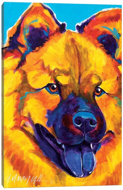 Sunshine Soul The Chow Chow Canvas Print #DWG131