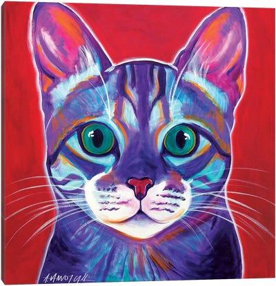 Surprise Canvas Art Print