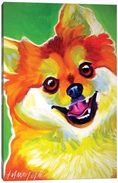Tiger The Pomeranian Canvas Art Print