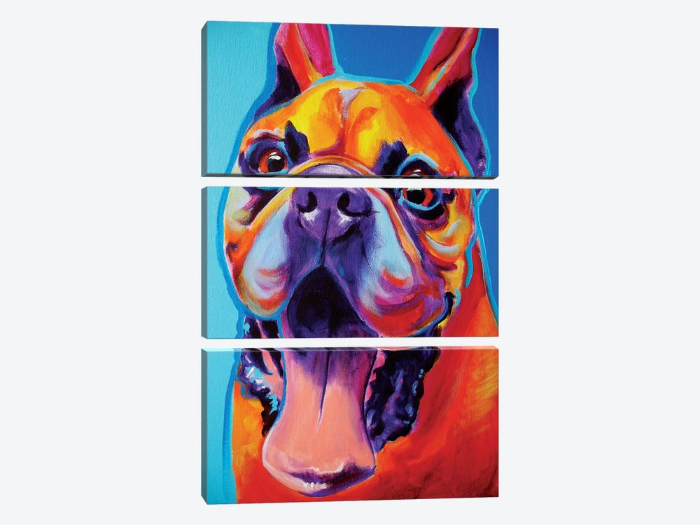 Tyson by DawgArt 3-piece Canvas Artwork