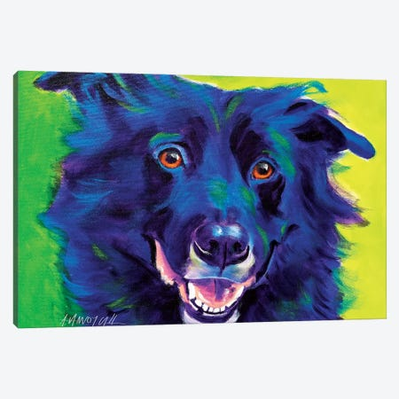 Viktor The Border Collie Canvas Print #DWG139} by DawgArt Canvas Wall Art