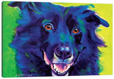 Viktor The Border Collie Canvas Art Print