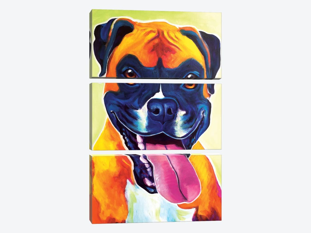 Bear The Boxer by DawgArt 3-piece Canvas Wall Art