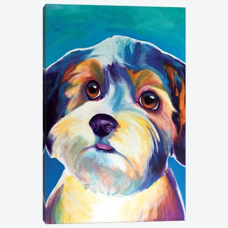 Zoe The Yorkipoo Canvas Print #DWG145} by DawgArt Canvas Wall Art