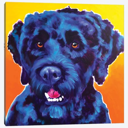 Banks The Portuguese Water Dog Canvas Print #DWG148} by DawgArt Art Print