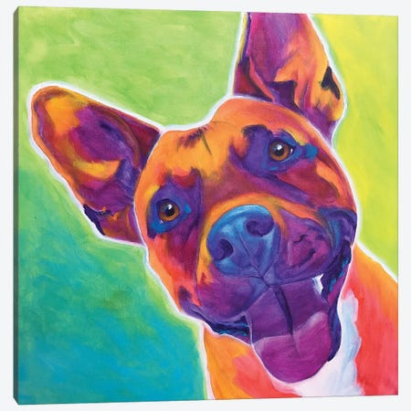 Billy The Pit Bull Canvas Print #DWG151} by DawgArt Canvas Art