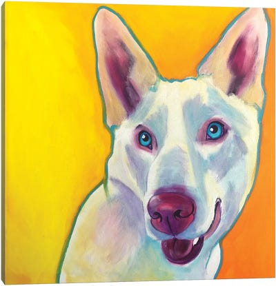 Charlie The Husky Canvas Art Print