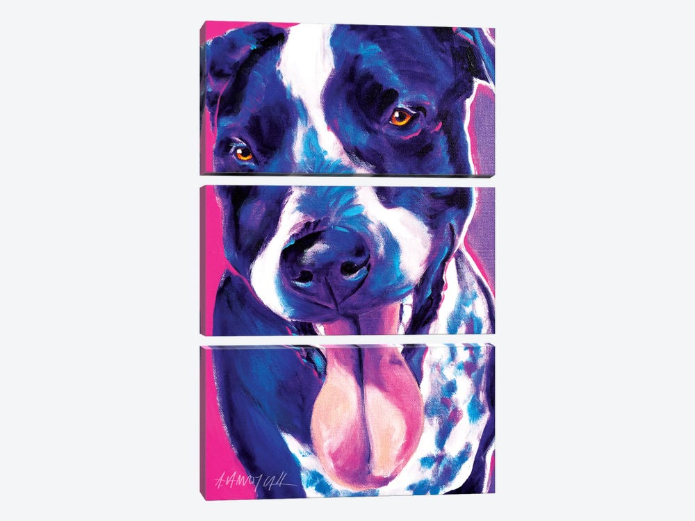 Bella The German Short Hair Pointer by DawgArt 3-piece Canvas Art
