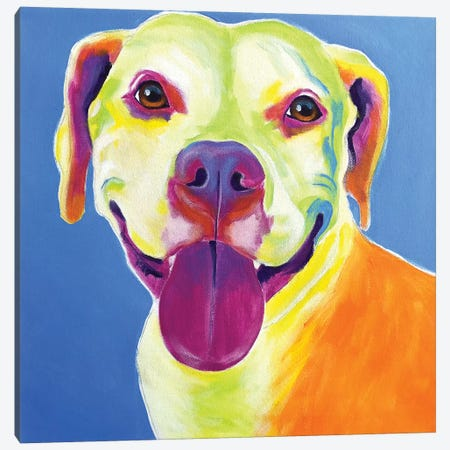 Daisy The Pit Bull Canvas Print #DWG160} by DawgArt Canvas Art Print