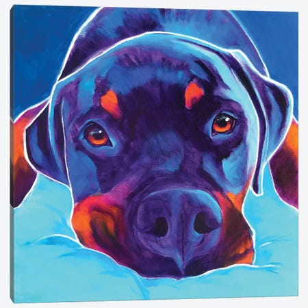 Dexter The Rottie II Canvas Print #DWG163} by DawgArt Canvas Print