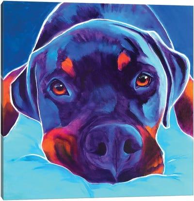 Dexter The Rottie II Canvas Art Print