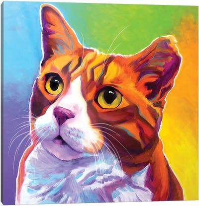 Ernie The Cat Canvas Art Print