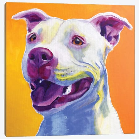 Honey The Pit Bull Canvas Print #DWG169} by DawgArt Canvas Art Print