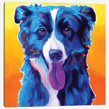 Jinx The Border Collie Canvas Print #DWG170} by DawgArt Canvas Wall Art