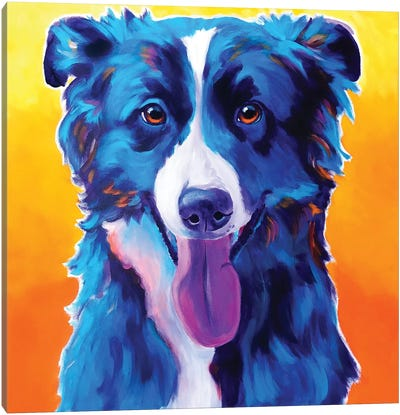 Jinx The Border Collie Canvas Art Print
