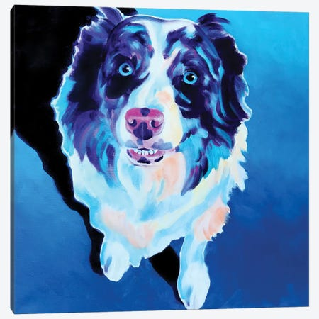 Kokanee The Aussie Canvas Print #DWG171} by DawgArt Canvas Wall Art