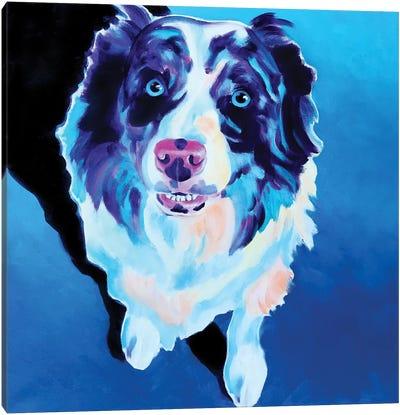Kokanee The Aussie Canvas Art Print