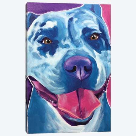 Merle The Pit Bull Canvas Print #DWG177} by DawgArt Canvas Print