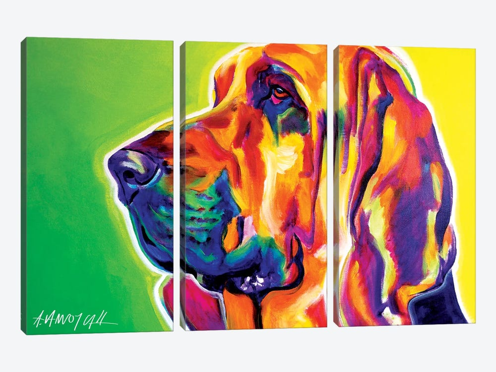 Bloodhound by DawgArt 3-piece Canvas Artwork