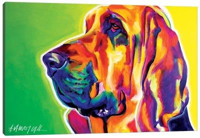 Bloodhound Canvas Art Print